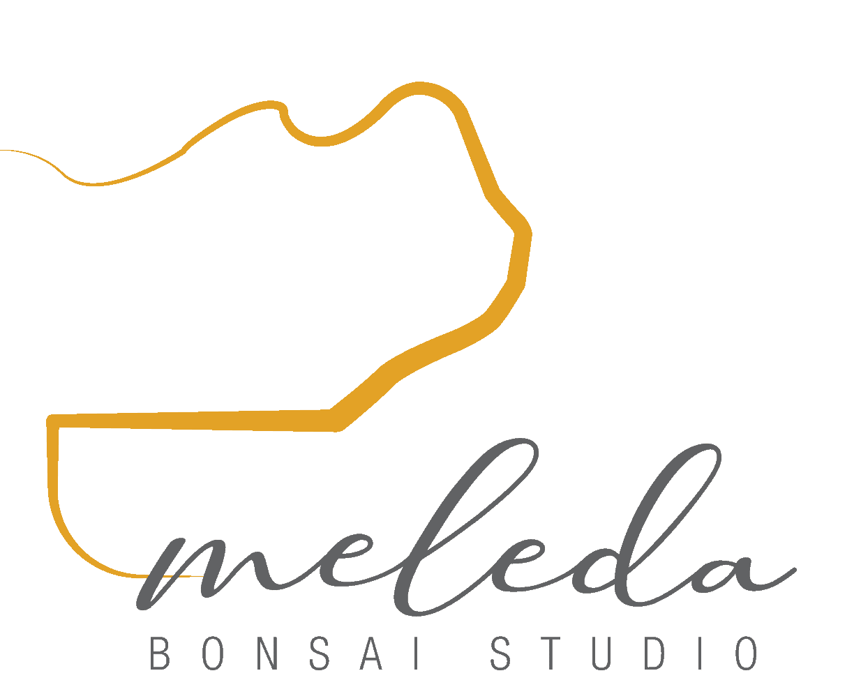 Meleda Bonsai Studio